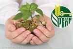 b_220_0_16777215_00_http___biysk22.ru_upload_iblock_380_rosselhozbank-kredity-malomu-biznesu.jpg