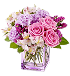 b_220_0_16777215_00_images_img_flowers.png